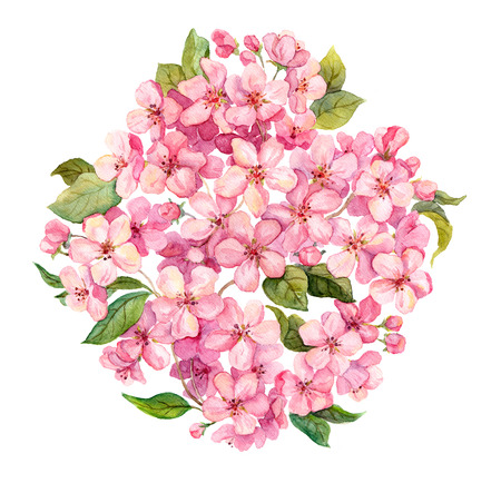 Photo for Pink spring flowers - sakura, apple flowers blossom, white background. Watercolor and handmade - Royalty Free Image