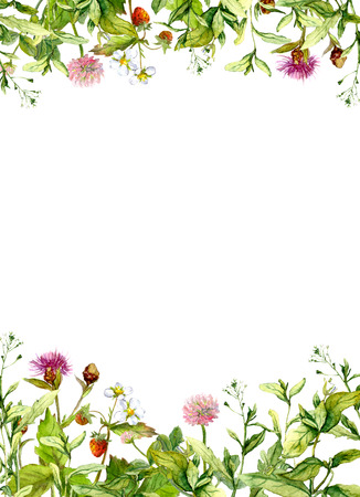 Photo for Blossom flowers, spring grass, herbs. Floral frame border Watercolor card - Royalty Free Image